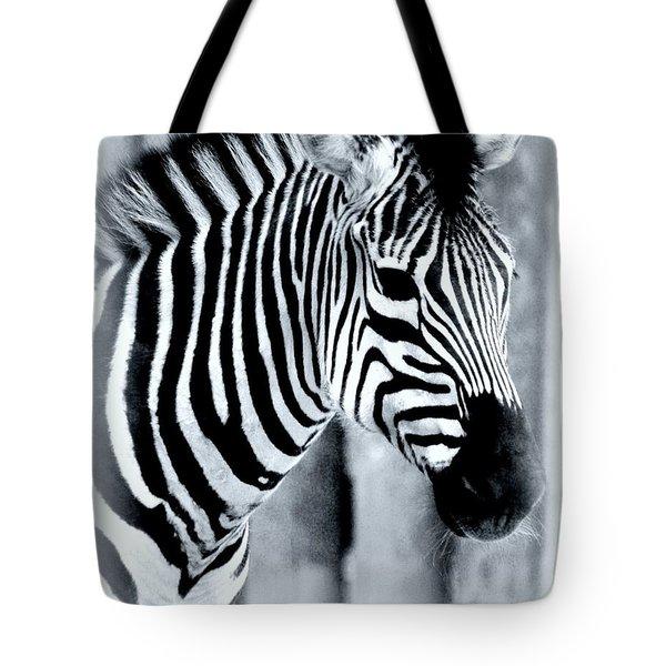 Zebra Tote Bag by Kathleen Struckle