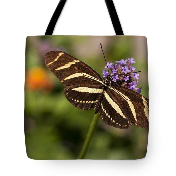 Zebra Longwing Butterfly Tote Bag by Adam Romanowicz