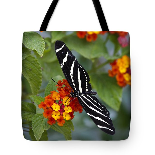 Zebra Longwing On Lantana Tote Bag by Saija  Lehtonen