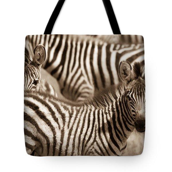 Zebra Stripes Galore Tote Bag
