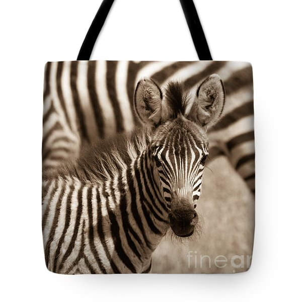 Zebra Stripes Galore Tote Bag