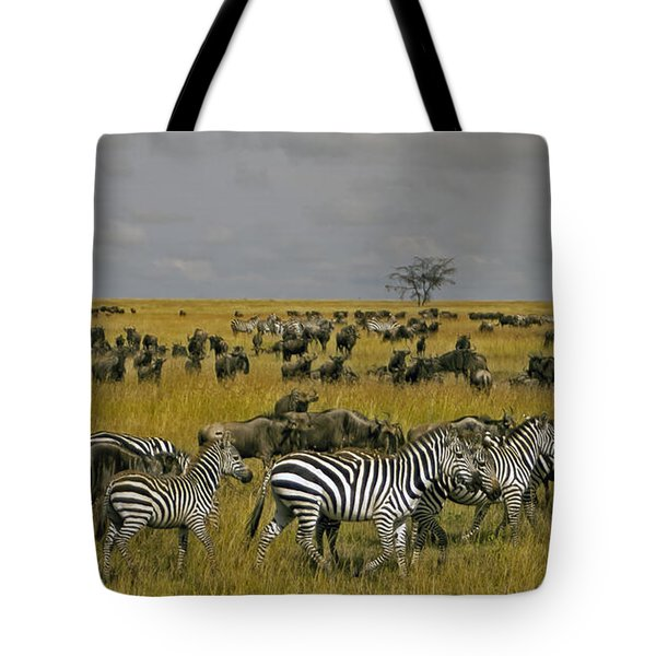 Zebras And Wildebeast   #0861 Tote Bag