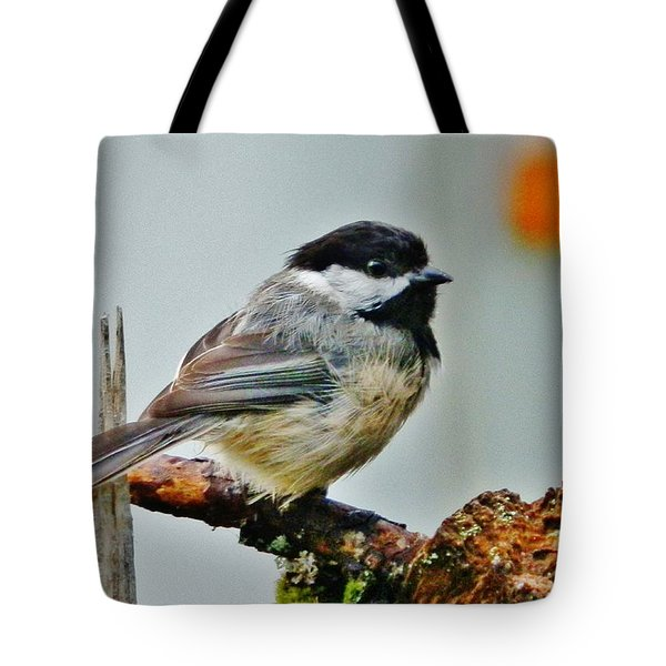 Tote Bag featuring the photograph Zen Chickadee by VLee Watson