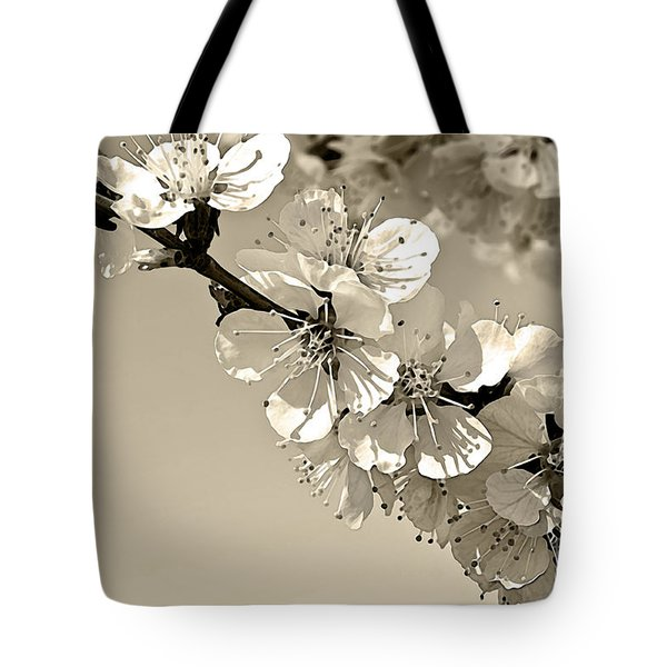 Zen Tote Bag by Sandi Mikuse