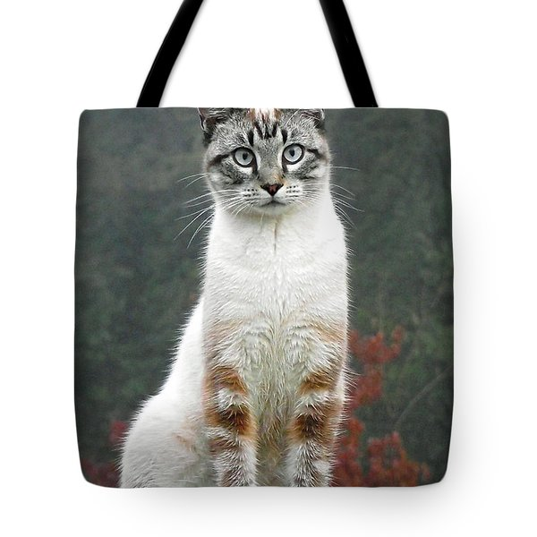 Zing The Cat Tote Bag