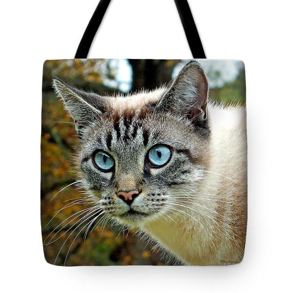 Zing The Cat Upclose Tote Bag
