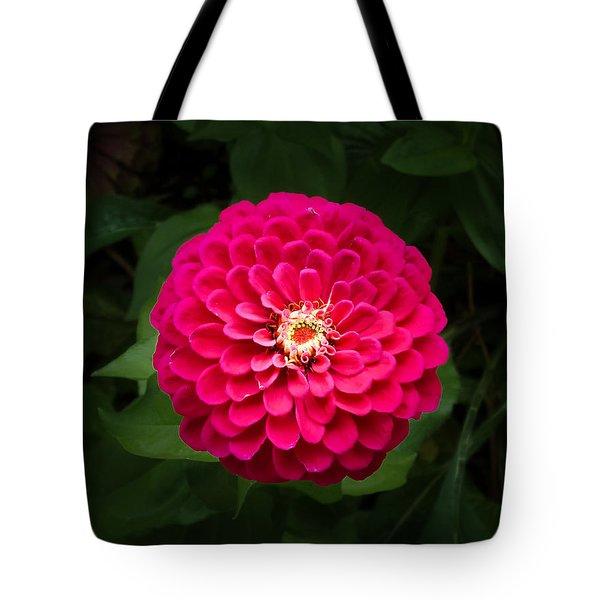 Zinnia In Bloom Tote Bag