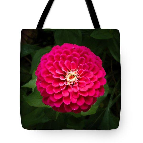 Zinnia In Bloom Square Tote Bag