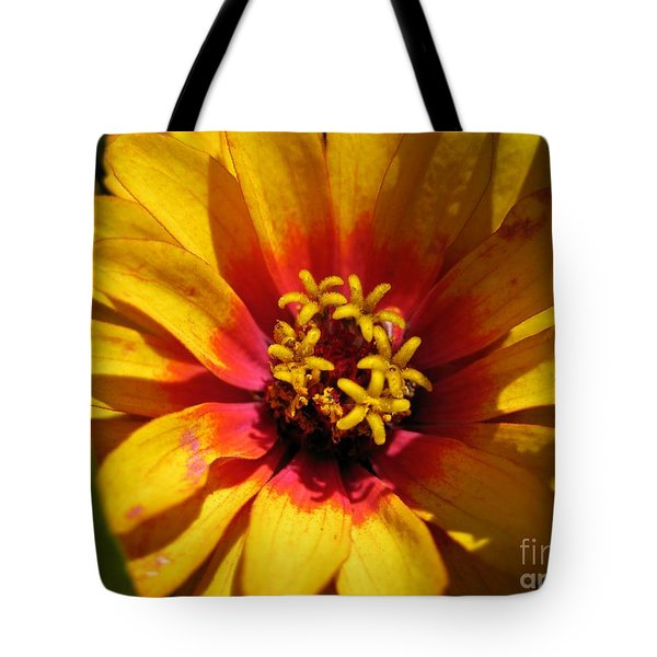 Zinnia Named Swizzle Scarlet And Yellow Tote Bag by J McCombie