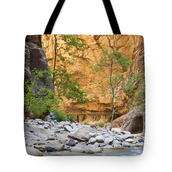 Tote Bag featuring the photograph Zion Narrows by Bryan Keil