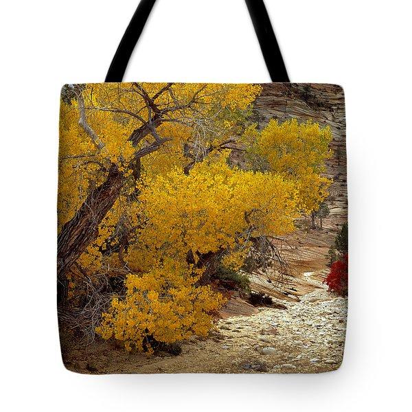 Zion National Park Autumn Tote Bag by Leland D Howard