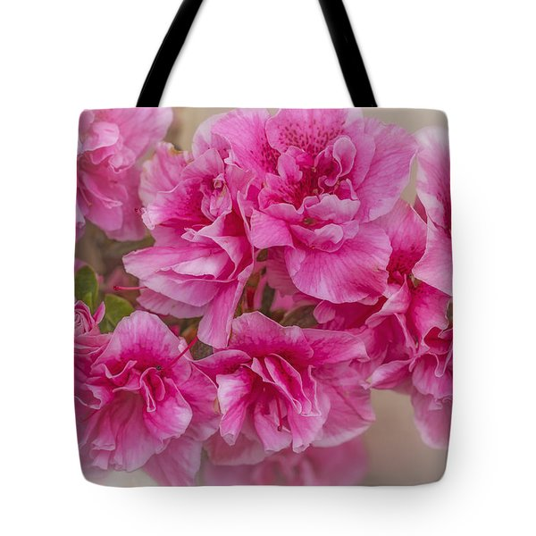 Tote Bag featuring the photograph Zoe by Elaine Teague