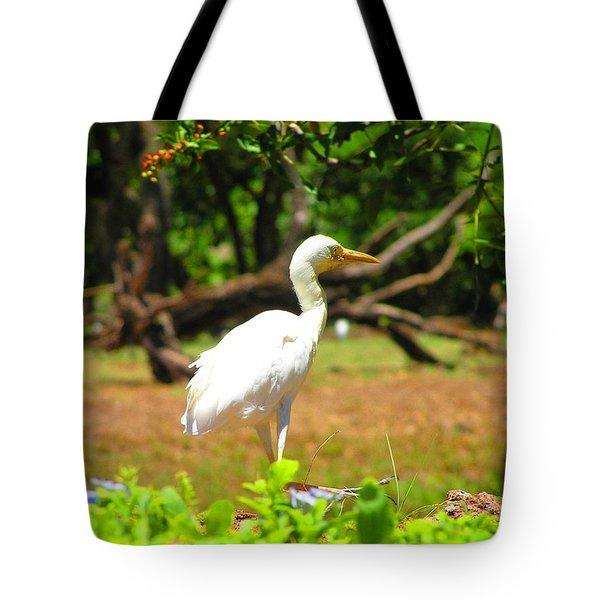 Zoo Tote Bag by Oleg Zavarzin