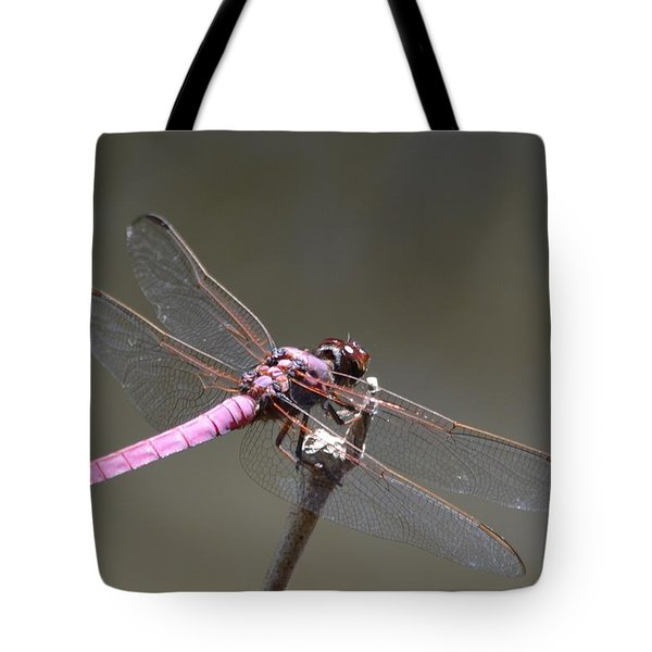 Zootography2 Pink Dragonfly Tote Bag by Jeff at JSJ Photography