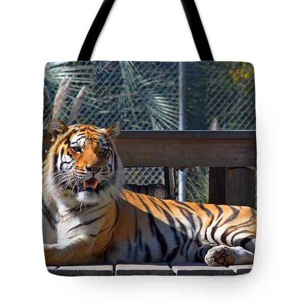 Zootography3 Tiger In The Sun Tote Bag by Jeff at JSJ Photography