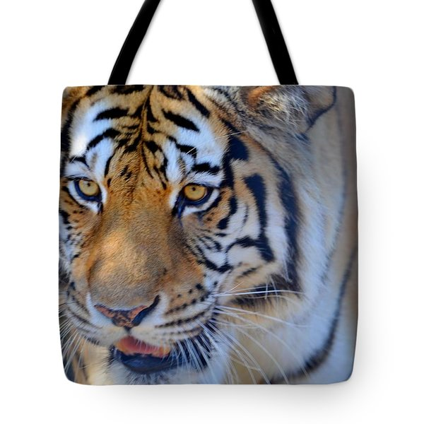 Zootography3 Tiger Prowl Close-up Tote Bag by Jeff at JSJ Photography