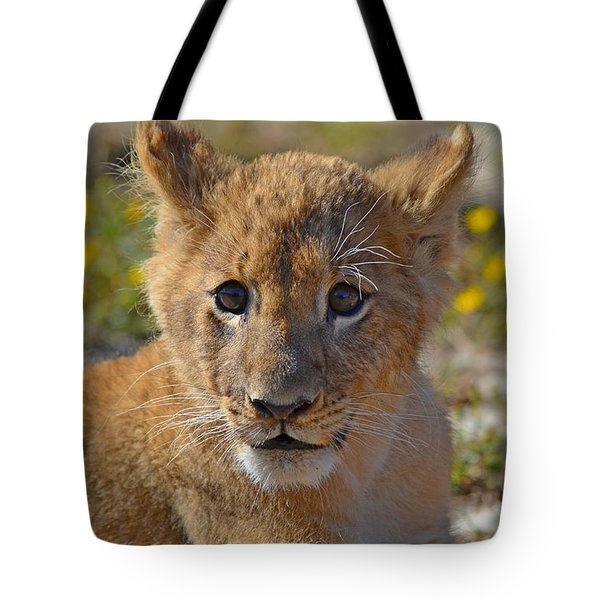 Zootography3 Zion The Lion Cub Tote Bag by Jeff at JSJ Photography