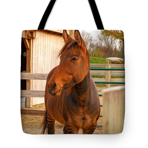 Zorse Tote Bag by Mary Carol Story