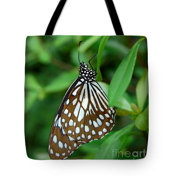 Tote Bag featuring the photograph  Blue Tiger Butterfly by Eva Kaufman