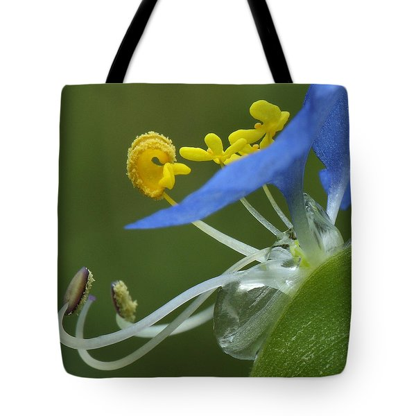 Close View Of Slender Dayflower Flower With Dew Tote Bag