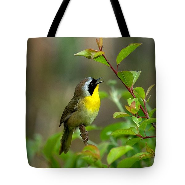 Tote Bag featuring the photograph  Common Yellowthroat Warbler Warbling Dsb006 by Gerry Gantt
