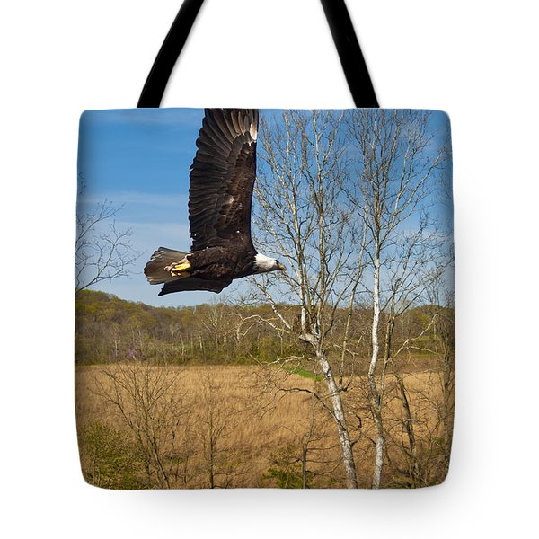 Tote Bag featuring the photograph  Eagle Circleing Her Nest by Randall Branham