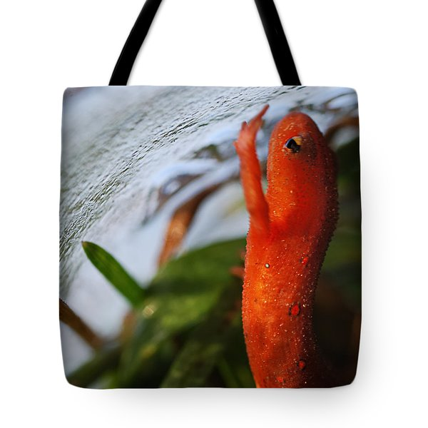 Glass Ceiling Tote Bag