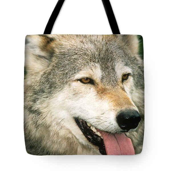 Happy Gray Wolf Tote Bag by Larry Allan