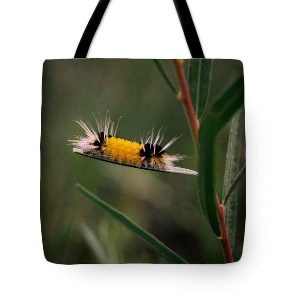 Struttin Your Stuff Tote Bag