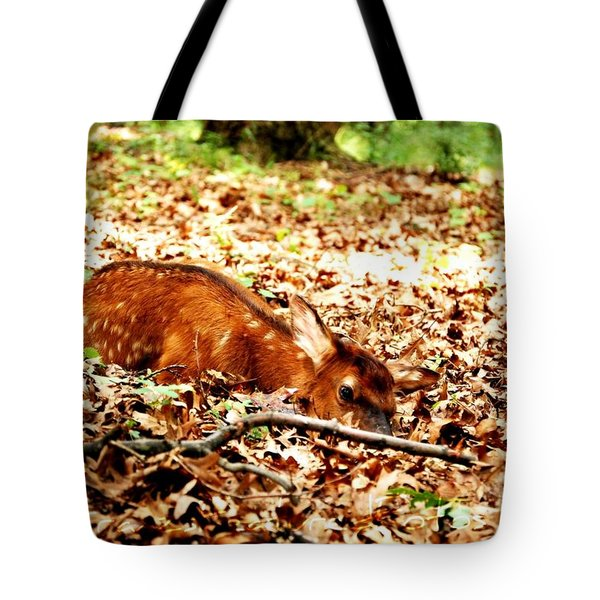 Tote Bag featuring the photograph  Sweet Baby Elk by Peggy Franz