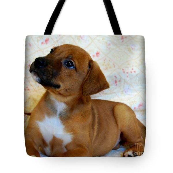 Tote Bag featuring the photograph   Take Me Home Please by Peggy Franz