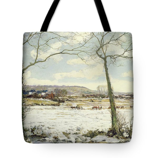 The Frozen Meadow Tote Bag by Alexander Jamieson