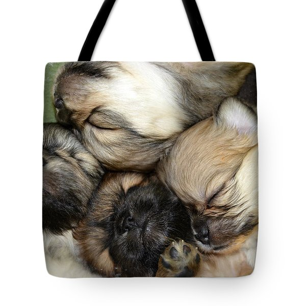 The Gang   Cute Puppies Tote Bag by Peggy Franz