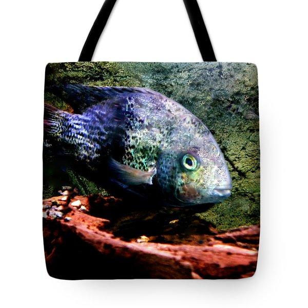 1 Fish Living In Denmark Tote Bag by Colette V Hera  Guggenheim
