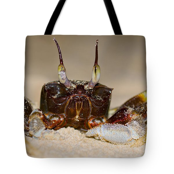 A Crab On The Shore  Tote Bag by Ulrich Schade