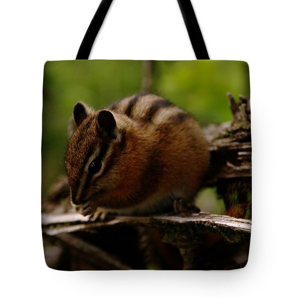 A Little Chipmunk Tote Bag by Jeff Swan