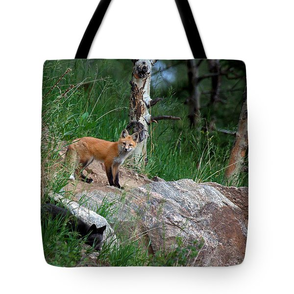 Tote Bag featuring the photograph A Mixed Bag by Jim Garrison