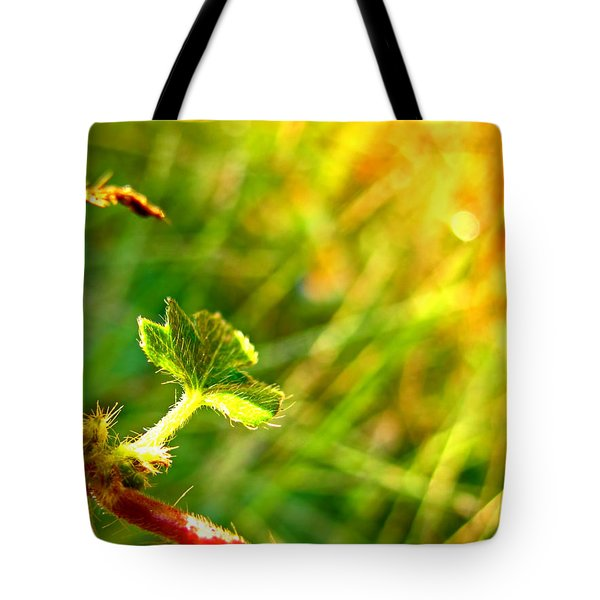 Tote Bag featuring the photograph A New Morning by Debbie Portwood