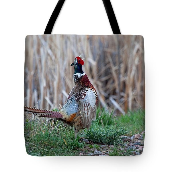 Tote Bag featuring the photograph A Proud Rooster by Jim Garrison