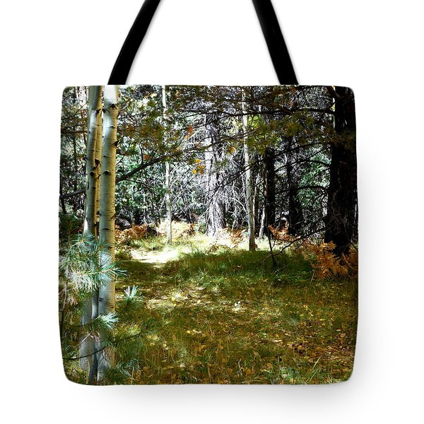 A Spot Of Sunlight Tote Bag by Fred Wilson