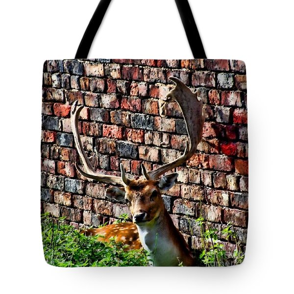 Against The Wall Tote Bag by Isabella F Abbie Shores FRSA