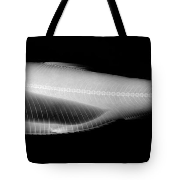 Alewife Tote Bag by Ted Kinsman
