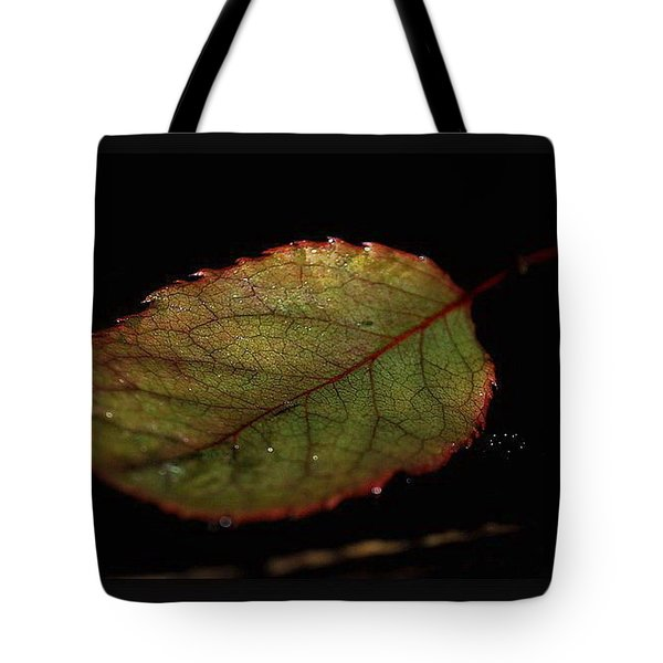 Tote Bag featuring the photograph Changes by Marija Djedovic
