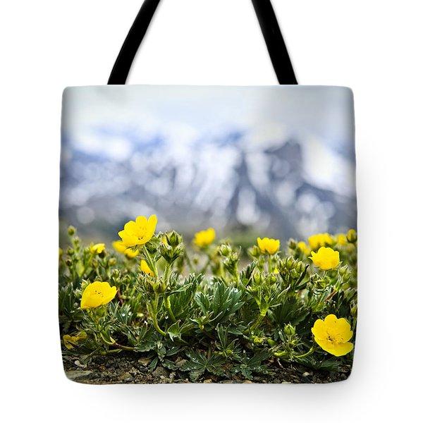 Alpine Meadow In Jasper National Park Tote Bag by Elena Elisseeva