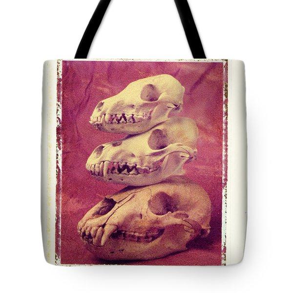 Animal Skulls Tote Bag by Garry Gay