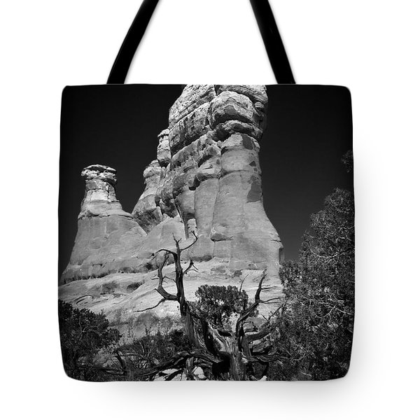 Arches National Park Bw Tote Bag