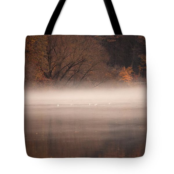 As The Fog Lifts Tote Bag by Karol Livote