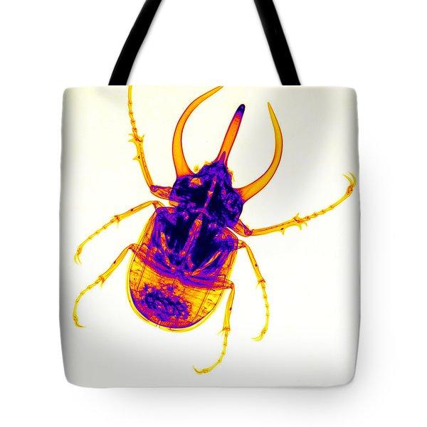 Atlas Beetle X-ray Tote Bag by Ted Kinsman
