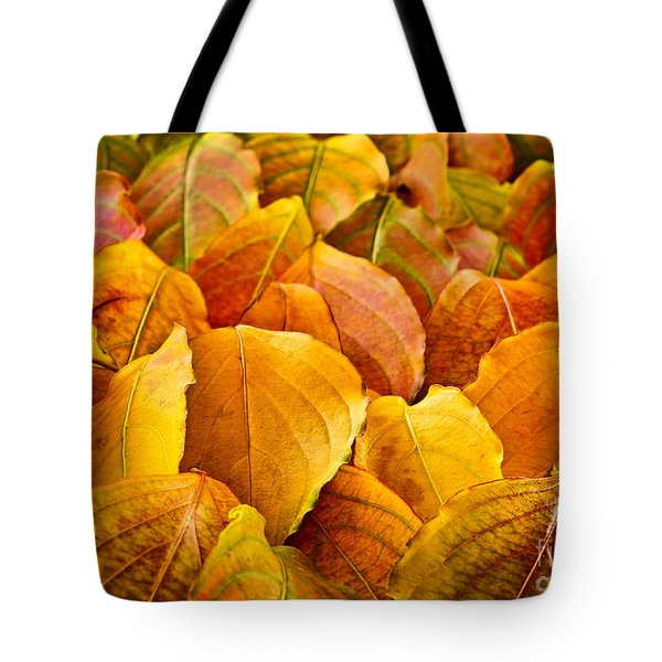Autumn Leaves  Tote Bag by Elena Elisseeva