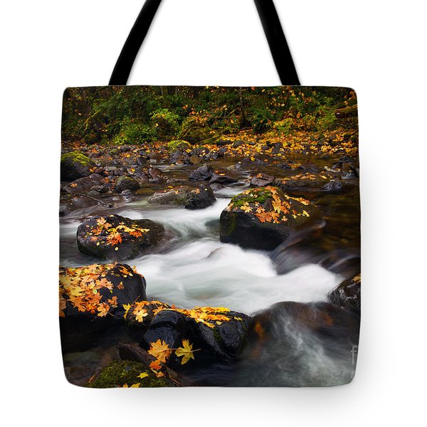 Autumn Passing Tote Bag by Mike  Dawson